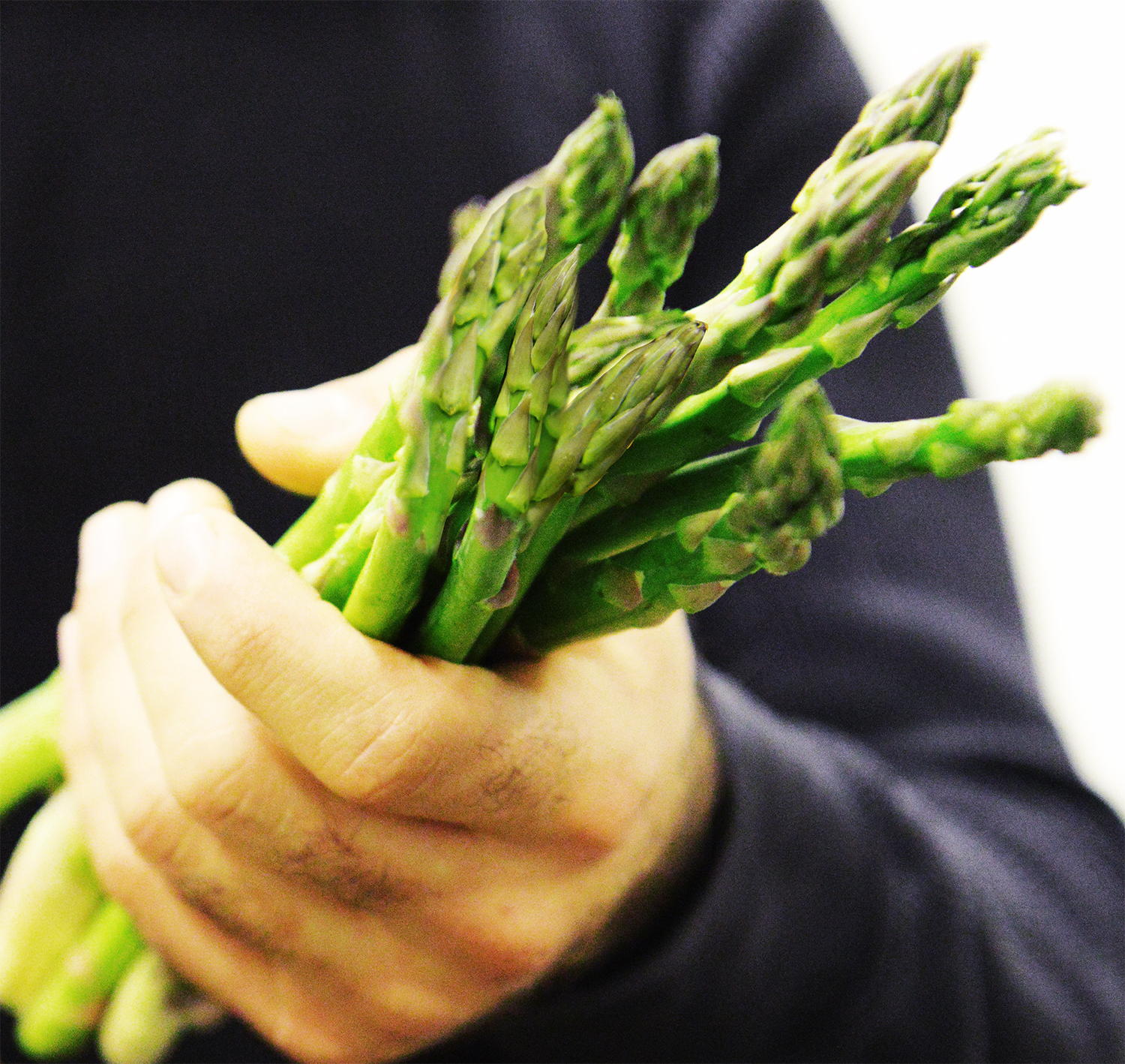 7. Asparagus likes to stand tall in a glass of water. - True or False?