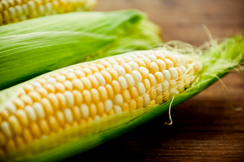 Corn on the Cob - When corn on the cob is picked fresh, you can throw the whole ear (husk and silk intact) into a container in the freezer. If you suspect the corn has been sitting for a while, you should peel and blanch it first prior to freezing. The blanching process should take anywhere between 7 - 11 minutes depending on the size.