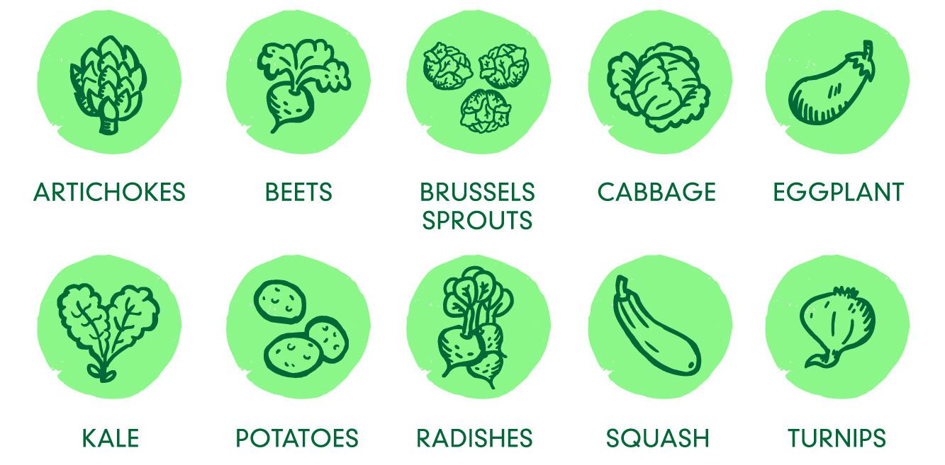 veggies-04.jpg