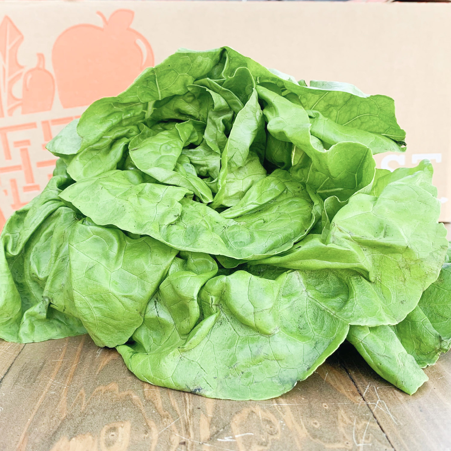 Simple Butter Lettuce SaladSometimes simple is best - like the combination of these fresh and salty flavors. - Find the recipe at: The Modern Proper
