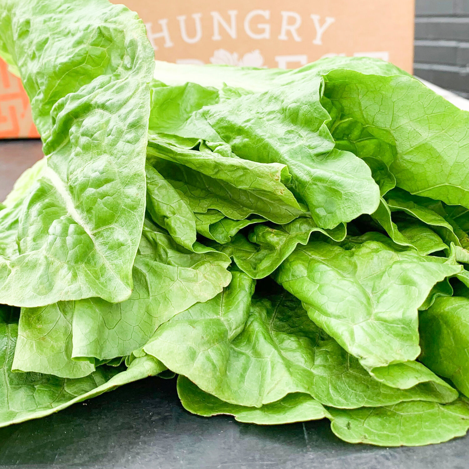 """Seared Romaine Lettuce Bottoms""""Scraps, Wilts & Weeds"""" authors came up with an amazing way to use every part of a head of Romaine in the most surprising and delicious of ways. - Find the recipe at: The Splendid Table"""