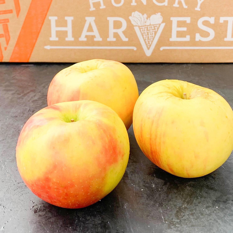 Apple Peel BourbonDon't let your apple peels go to waste! Based on Tara Duggan's