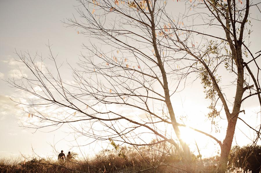 November Light Engagement Session   Lakeland, FL   Golden Field