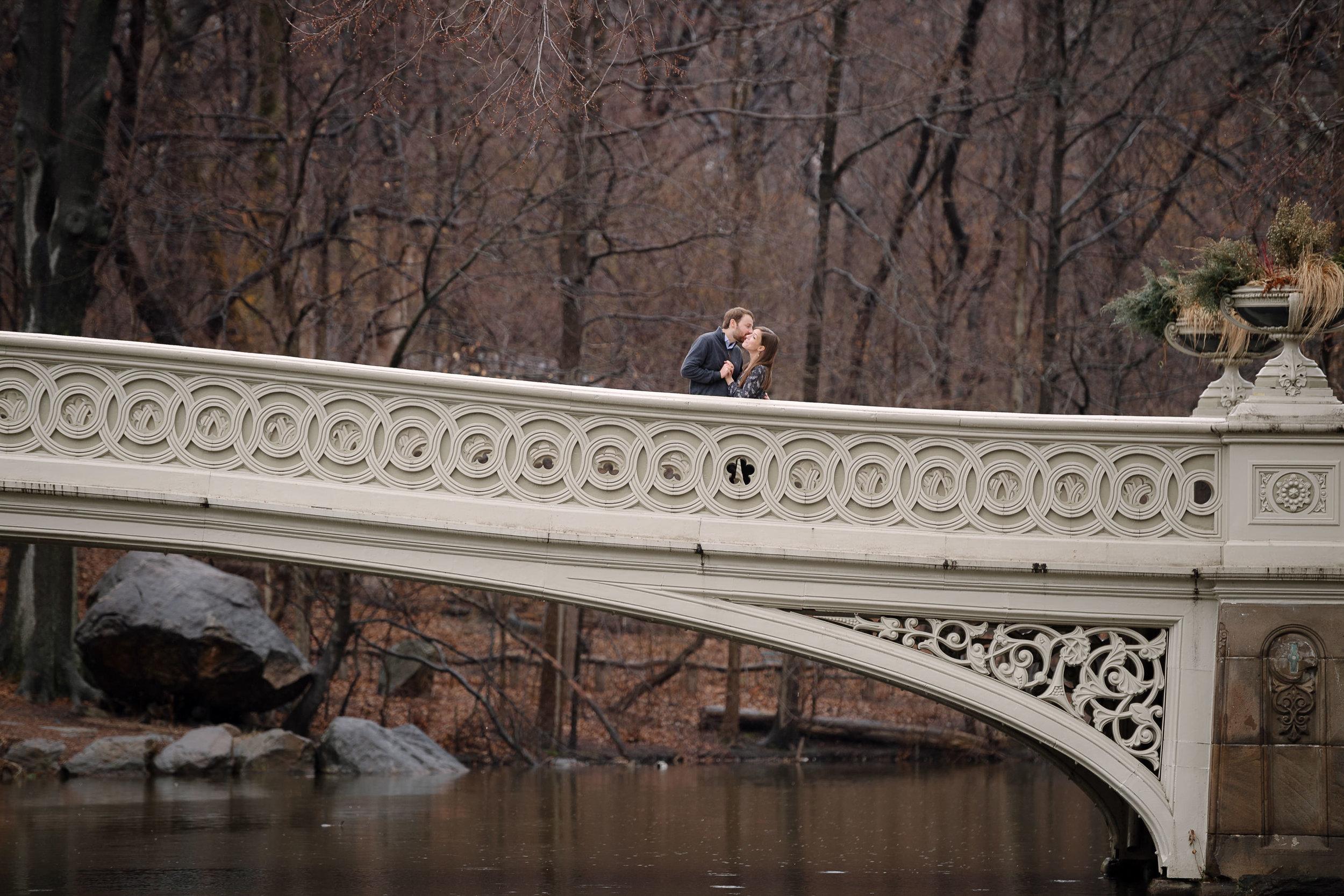 Central Park New York City Engagement Session