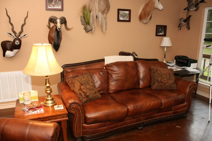 Couch seating area