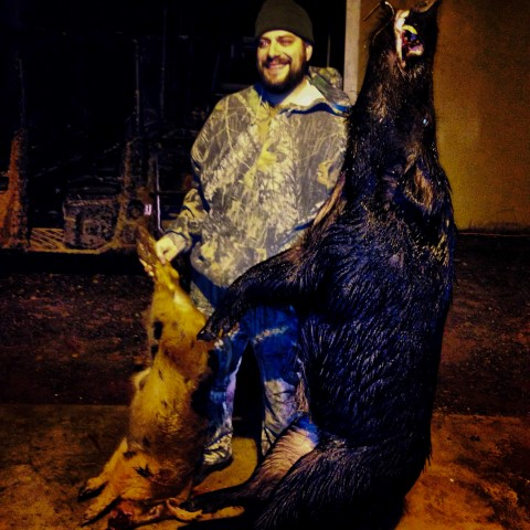 Huge black hog and hunter
