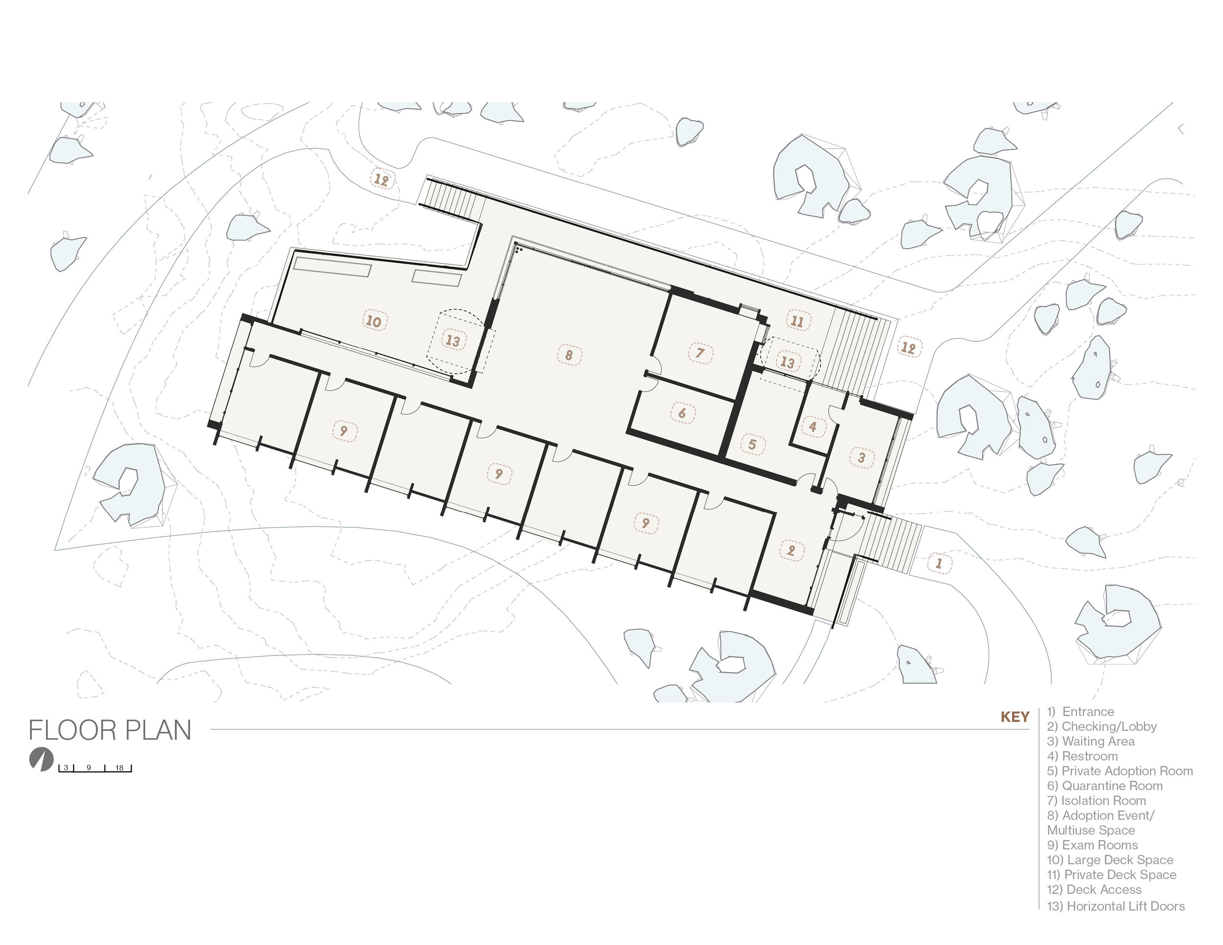 FurKids Campus - Image -  (3).jpg