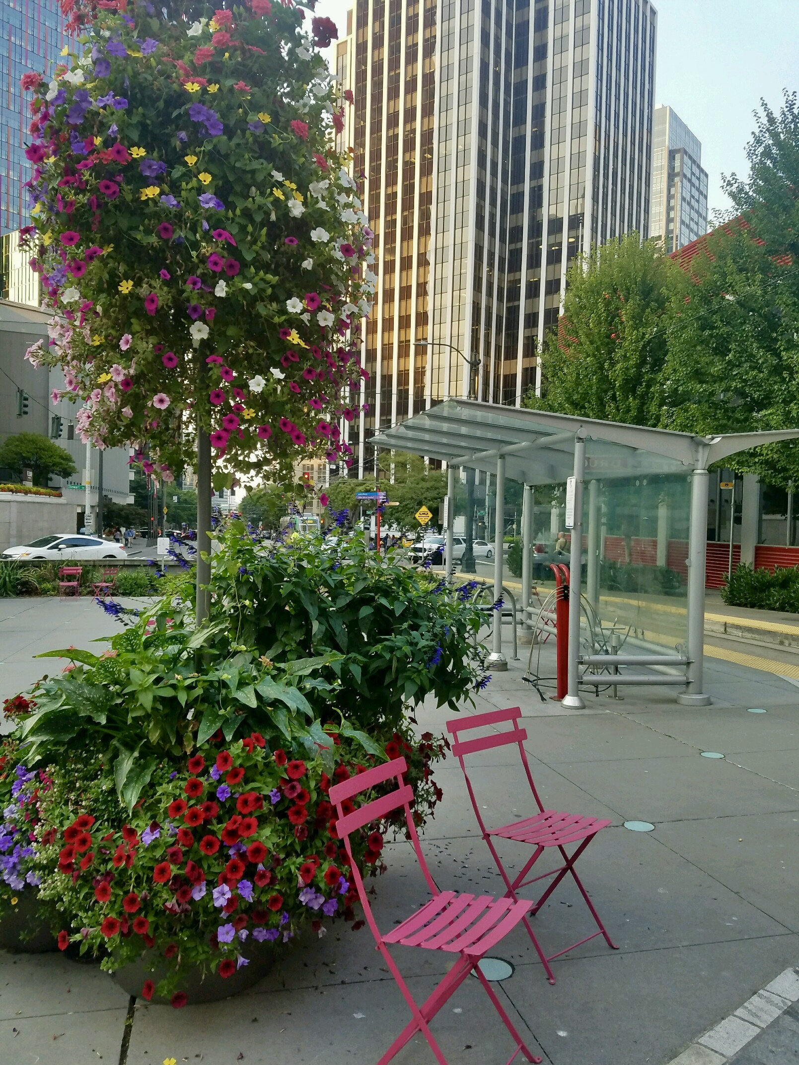 Pink chairs, Seattle