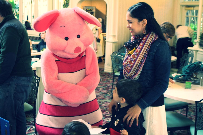Hi Pigglet!