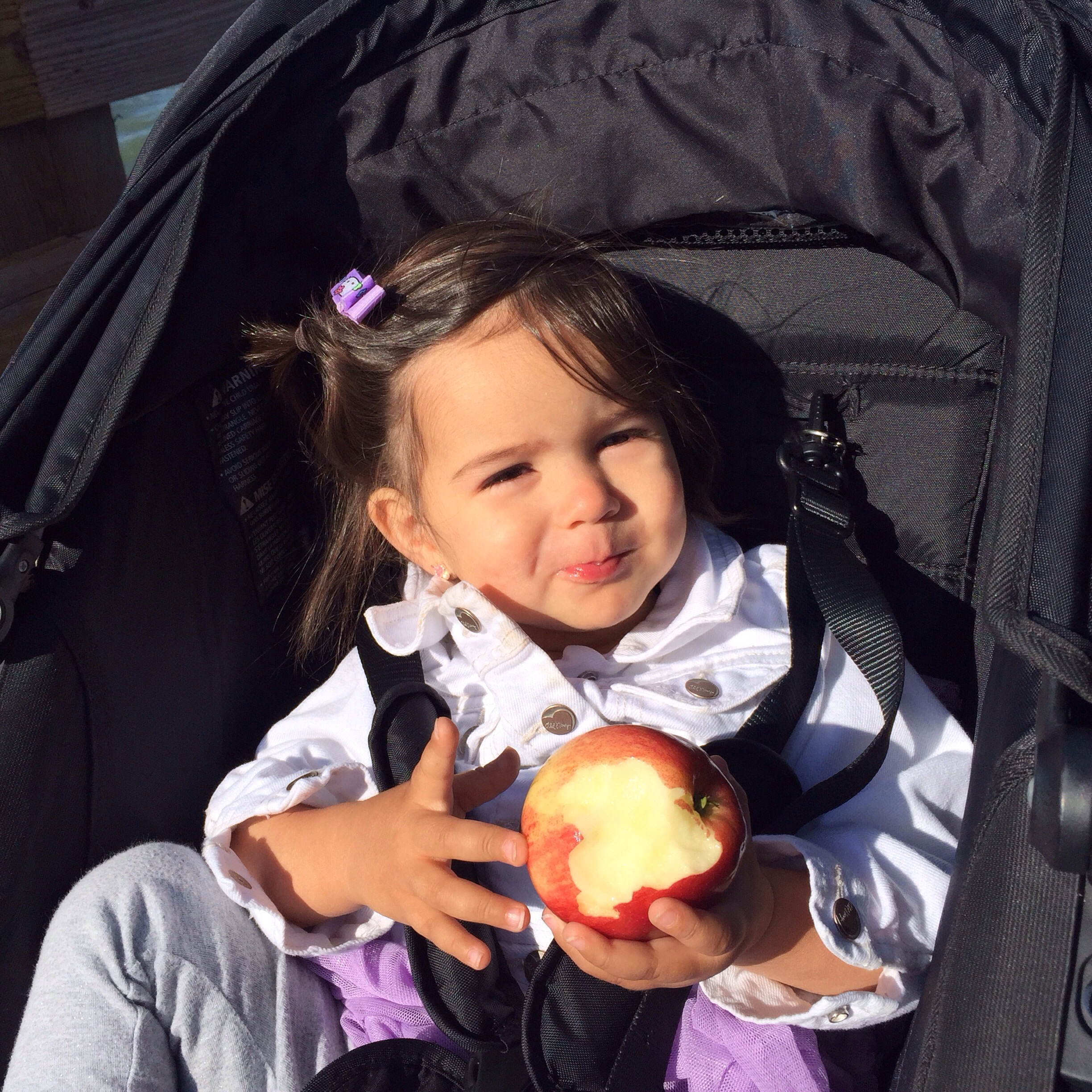 She loves apples, eats one pretty much everyday!