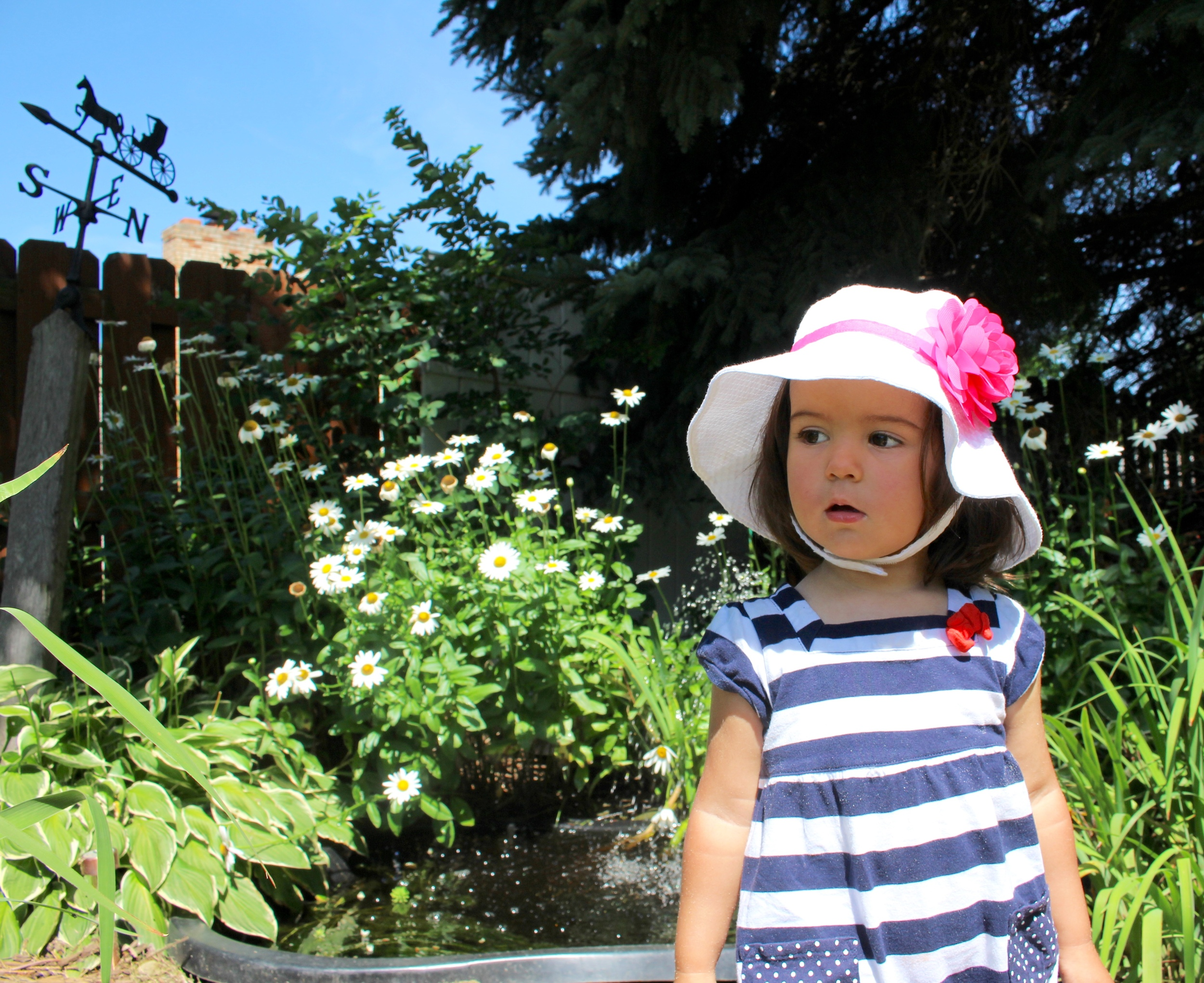 Dominika loved exploring grandma's backyard. She kept asking when the goldfish will come out.