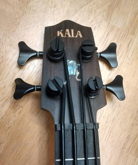Kala head crop sm.jpg