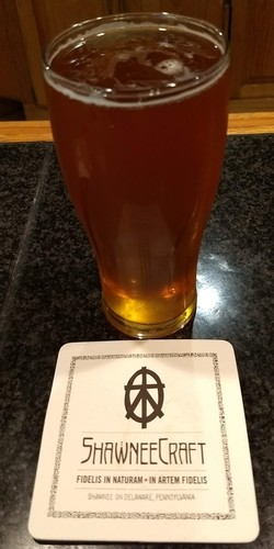 A Mosaic IPA from the adjacent Shawnee Craft Brewery. Very good!