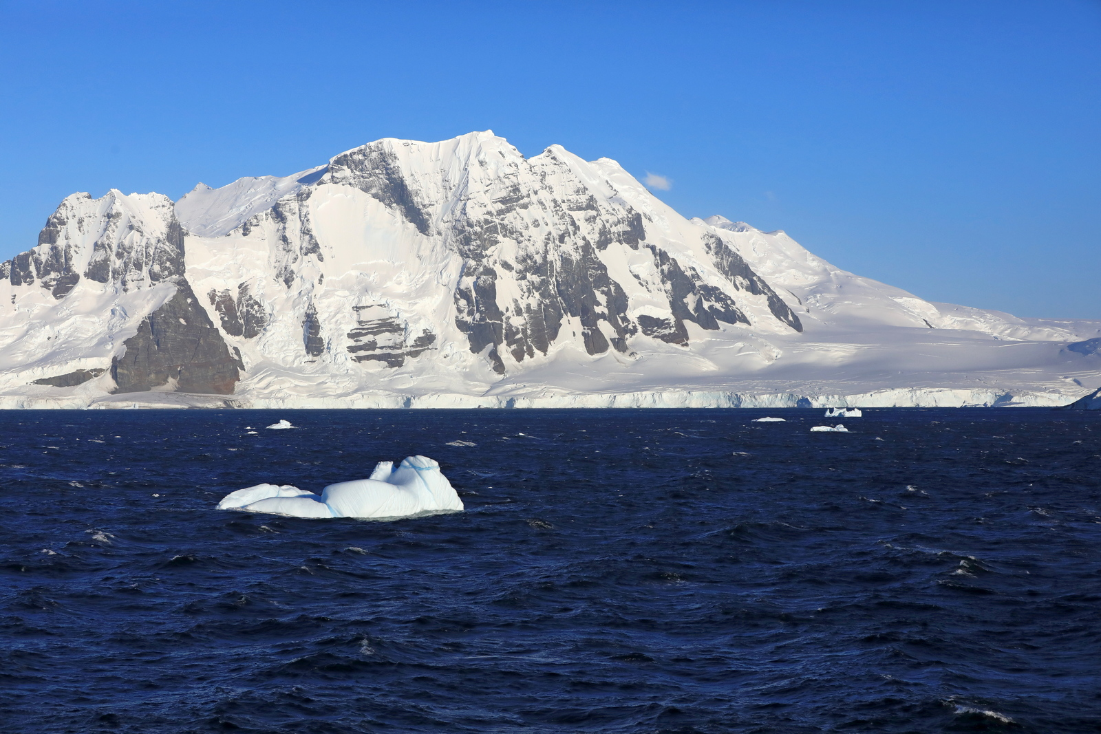 1702_Antarctique_01411_c_sm.jpg