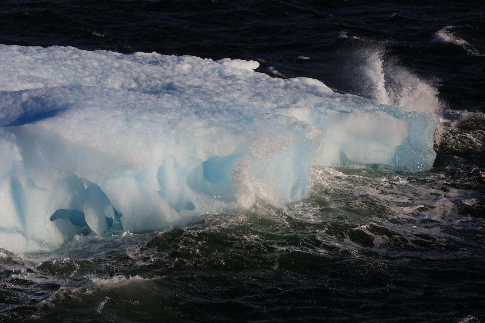 1702_Antarctique_01711_c_sm.jpg