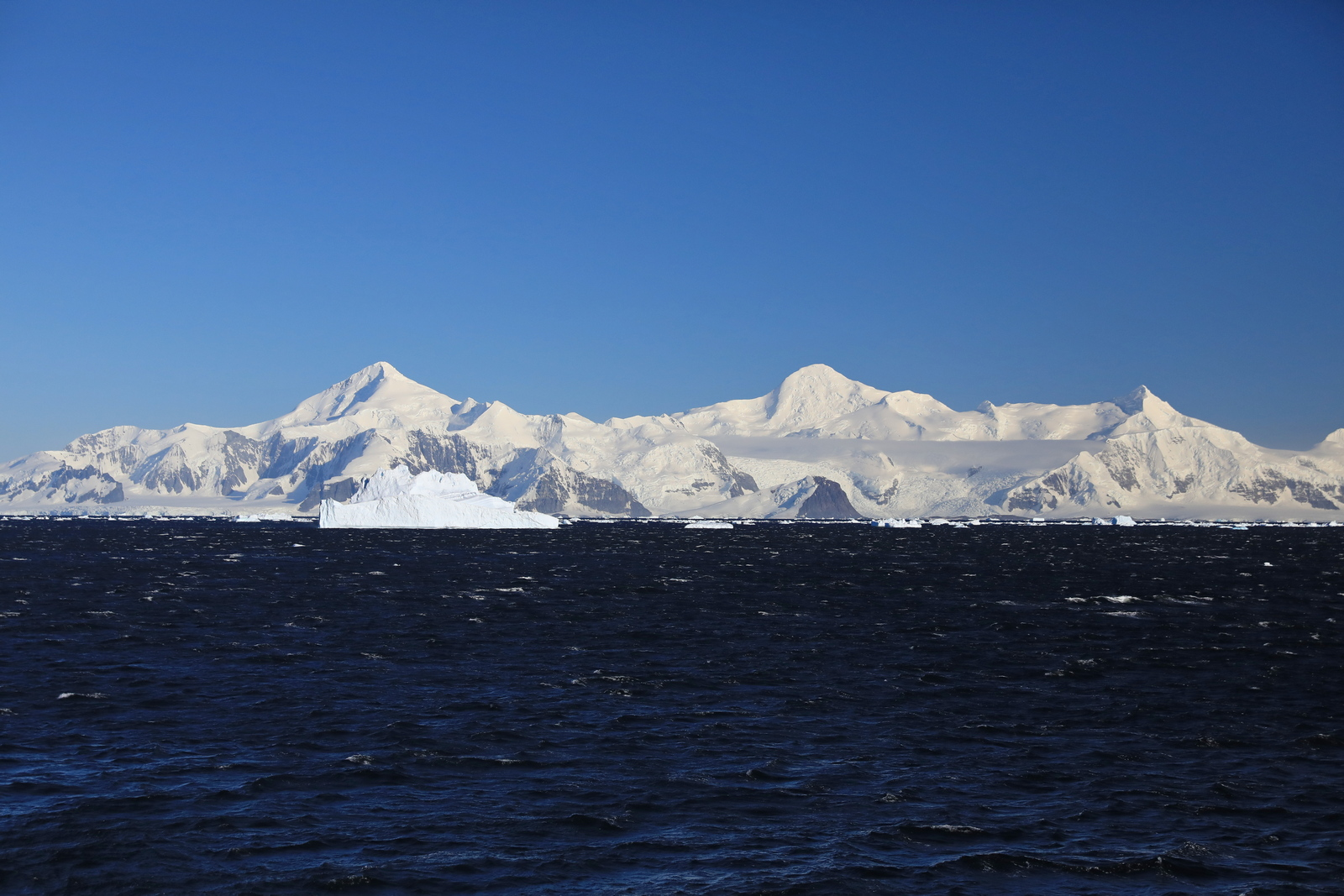 1702_Antarctique_01794_c_sm.jpg