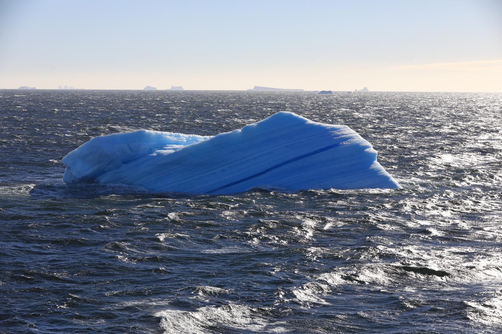 1702_Antarctique_02334_c_sm.jpg
