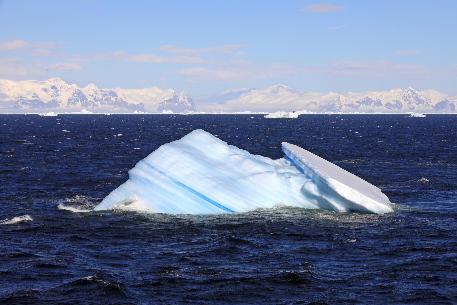 1702_Antarctique_02362_c_sm.jpg