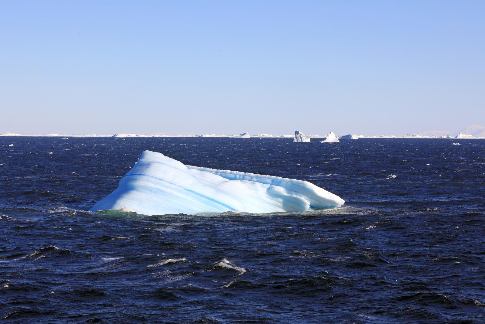 1702_Antarctique_02377_c_sm.jpg