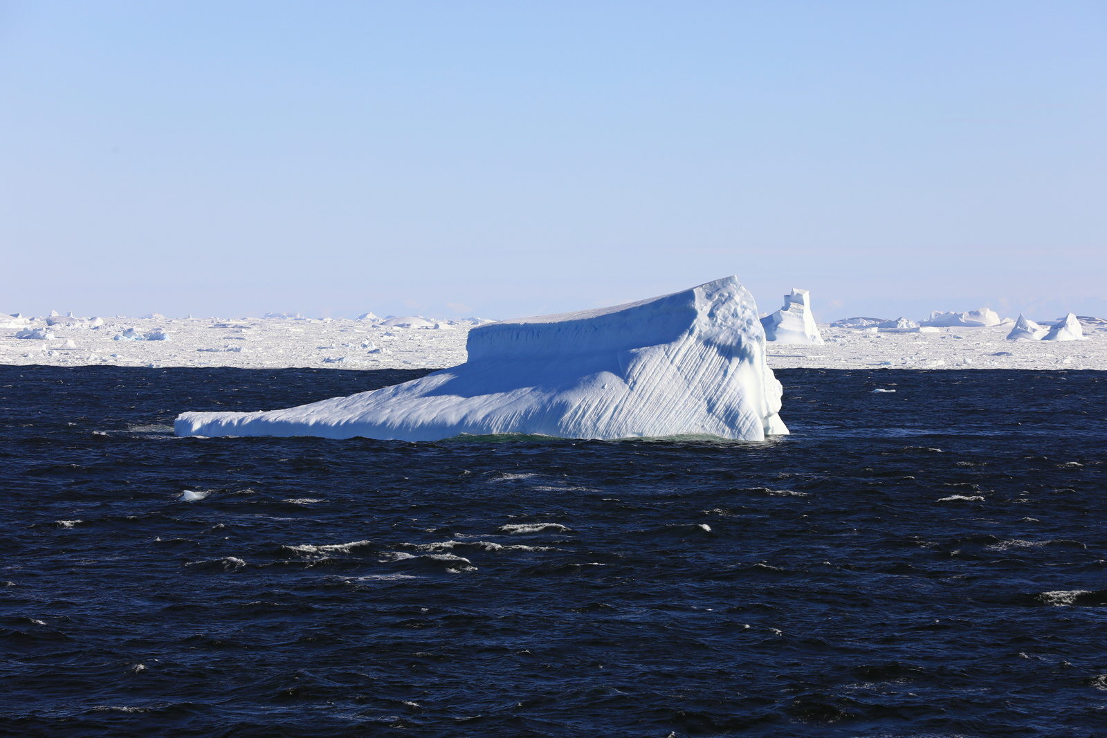 1702_Antarctique_02521_c_sm.jpg