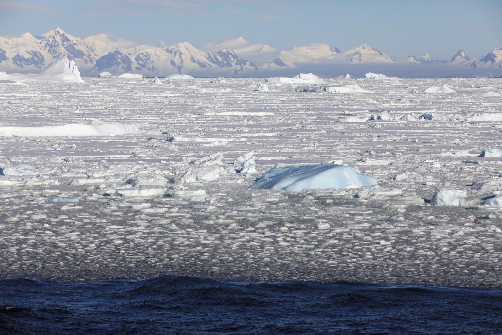 1702_Antarctique_02633_c_sm.jpg