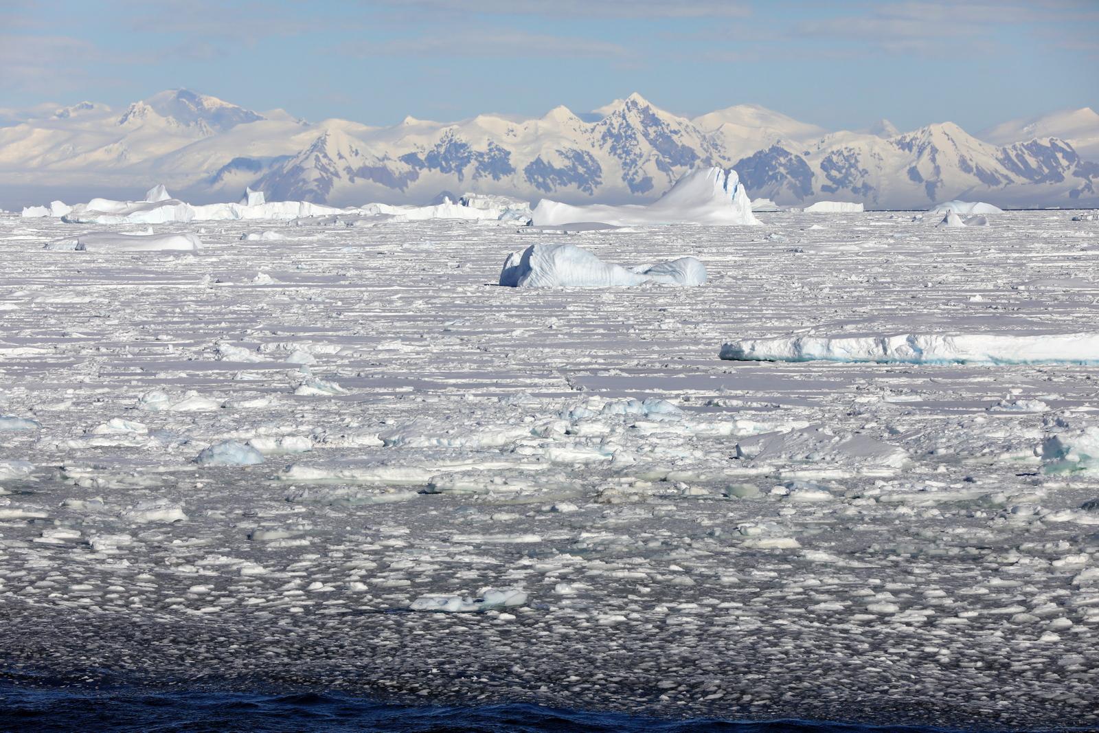 1702_Antarctique_02636_c_sm.jpg