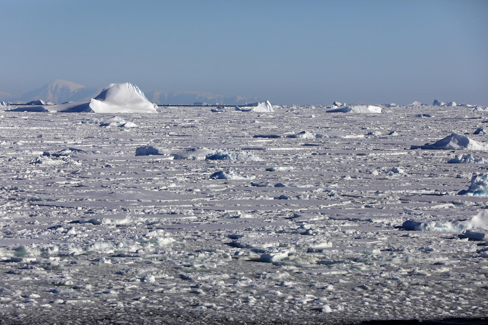 1702_Antarctique_02727_c_sm.jpg