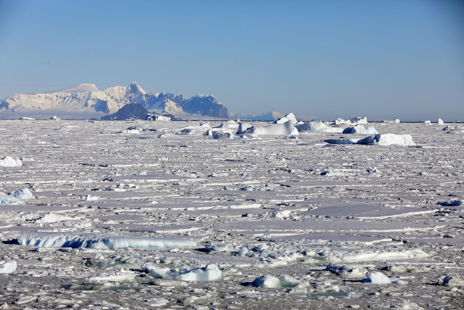 1702_Antarctique_02765_c_sm.jpg