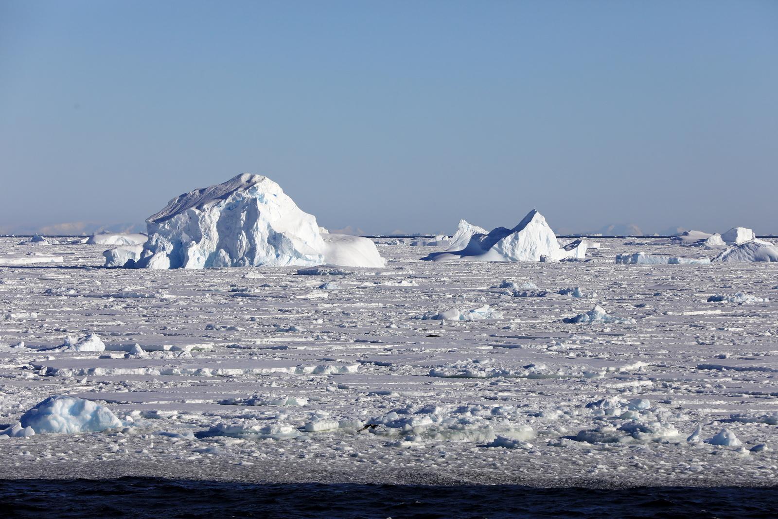 1702_Antarctique_02791_c_sm.jpg