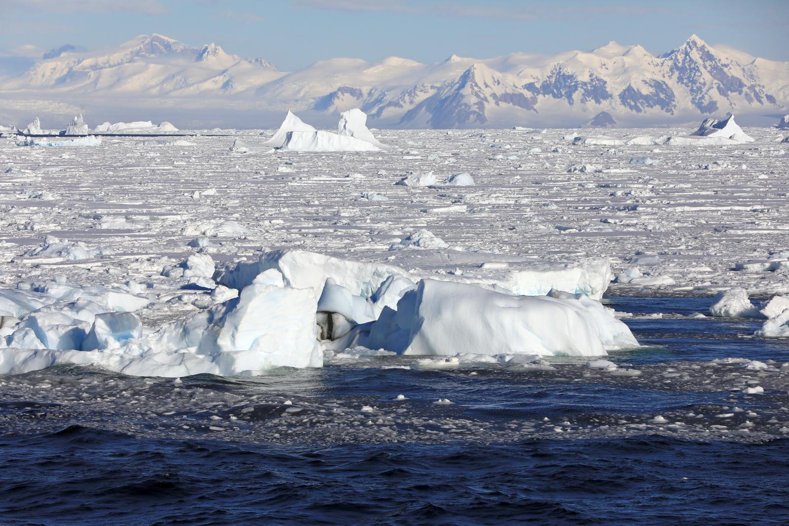 1702_Antarctique_02792_c_sm.jpg