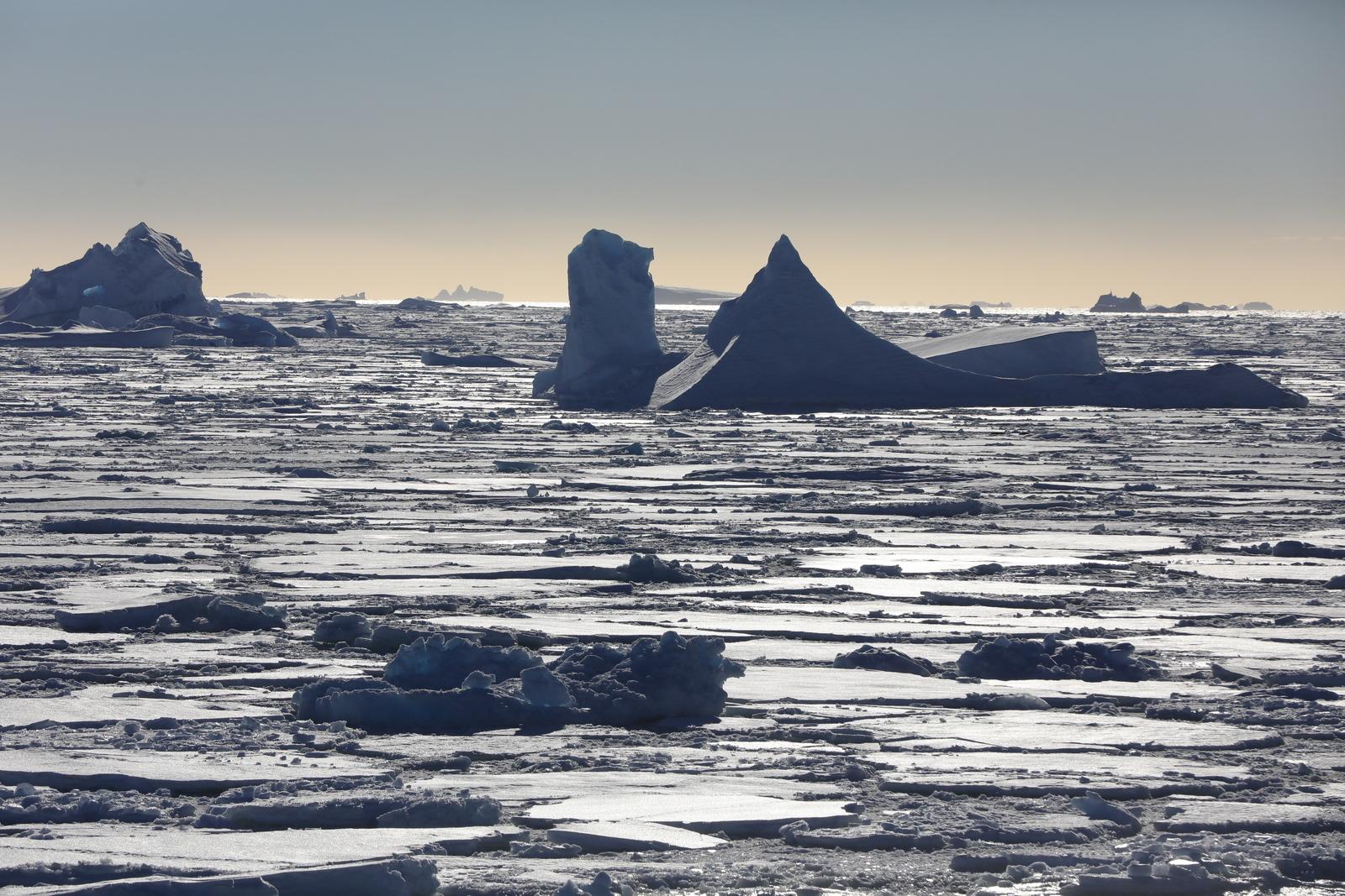 1702_Antarctique_02839_c_sm.jpg