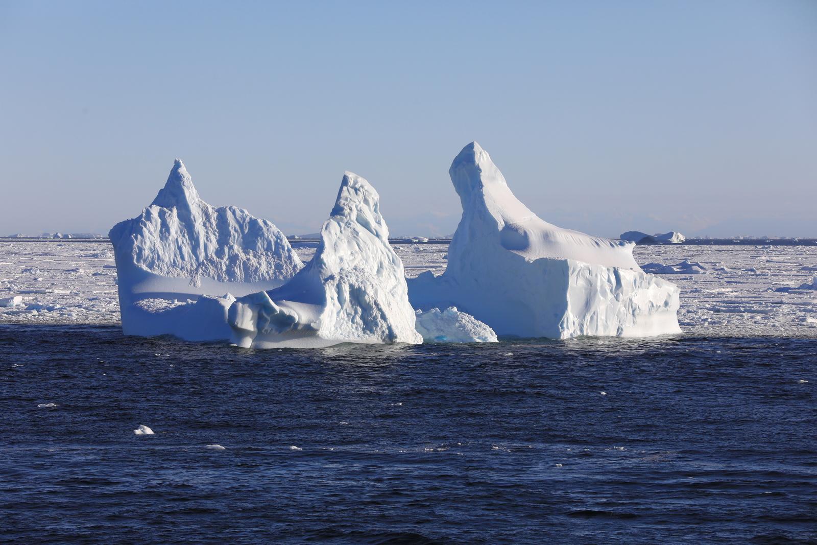 1702_Antarctique_02897_c_sm.jpg