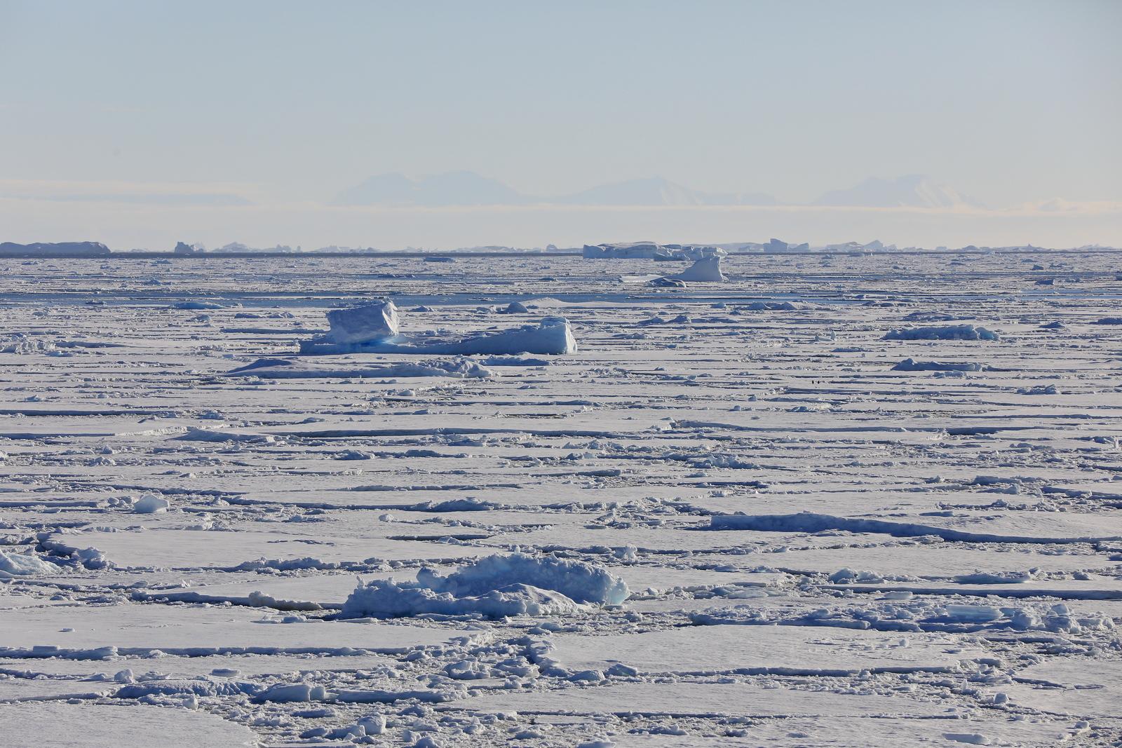 1702_Antarctique_02920_c_sm.jpg
