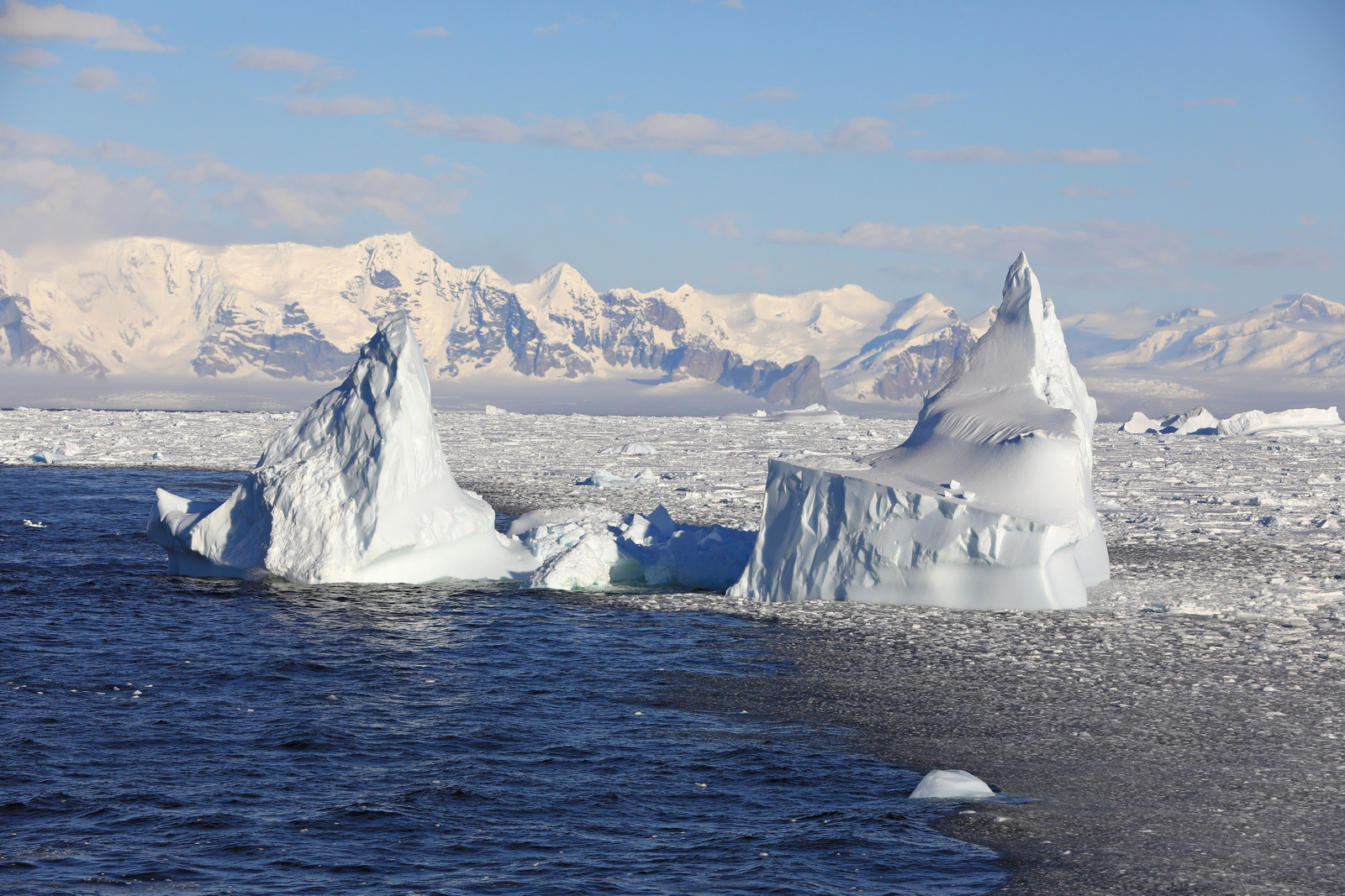 1702_Antarctique_02932_c_sm.jpg