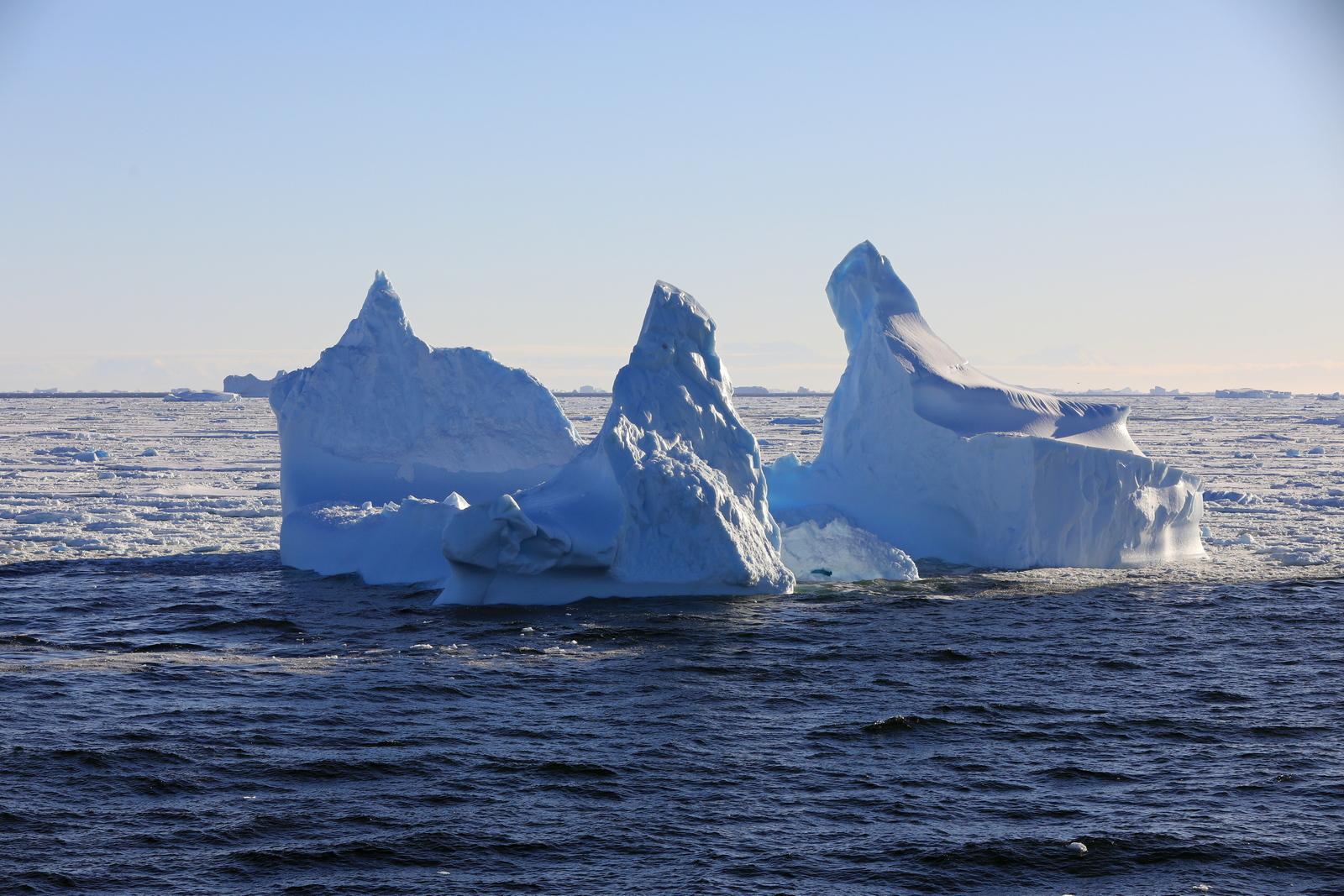 1702_Antarctique_02965_c_sm.jpg