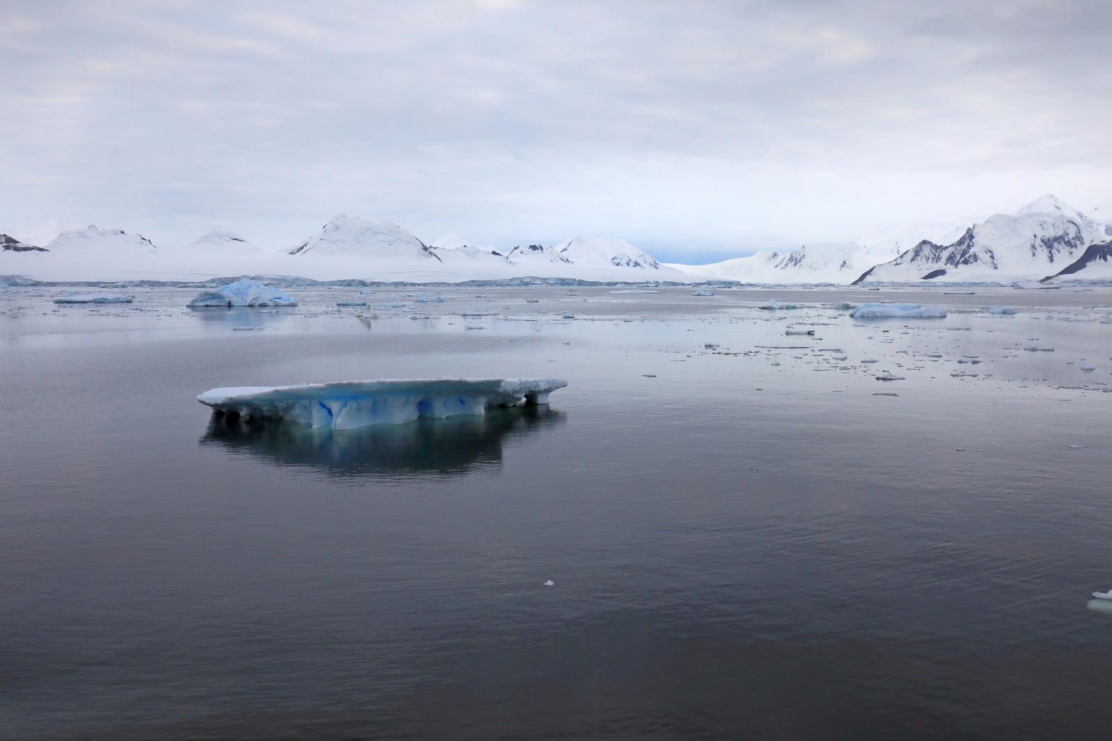1702_Antarctique_03890_c_sm.jpg