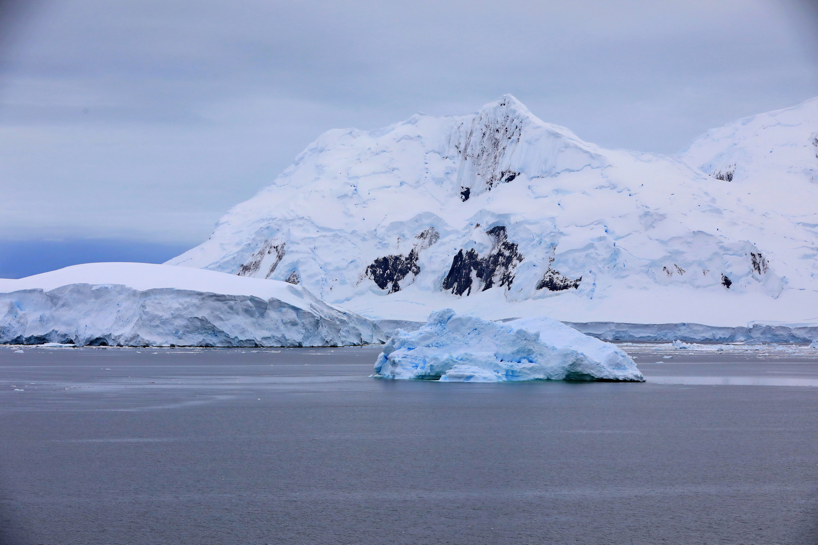 1702_Antarctique_04034_c_sm.jpg