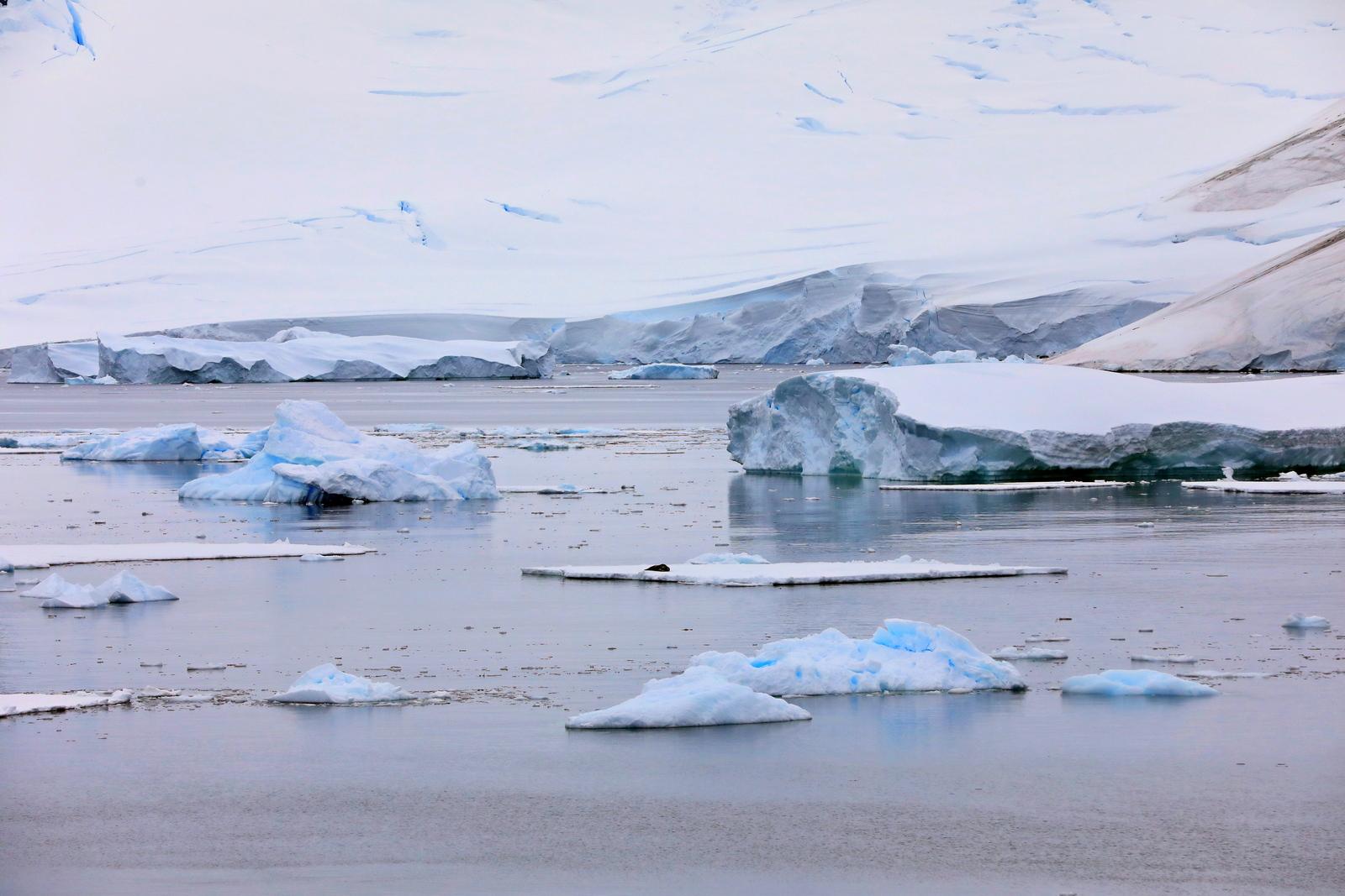 1702_Antarctique_04078_c_sm.jpg