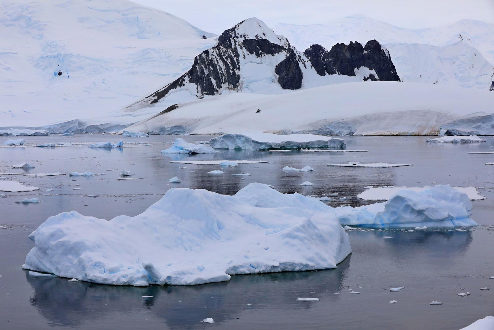 1702_Antarctique_04088_c_sm.jpg