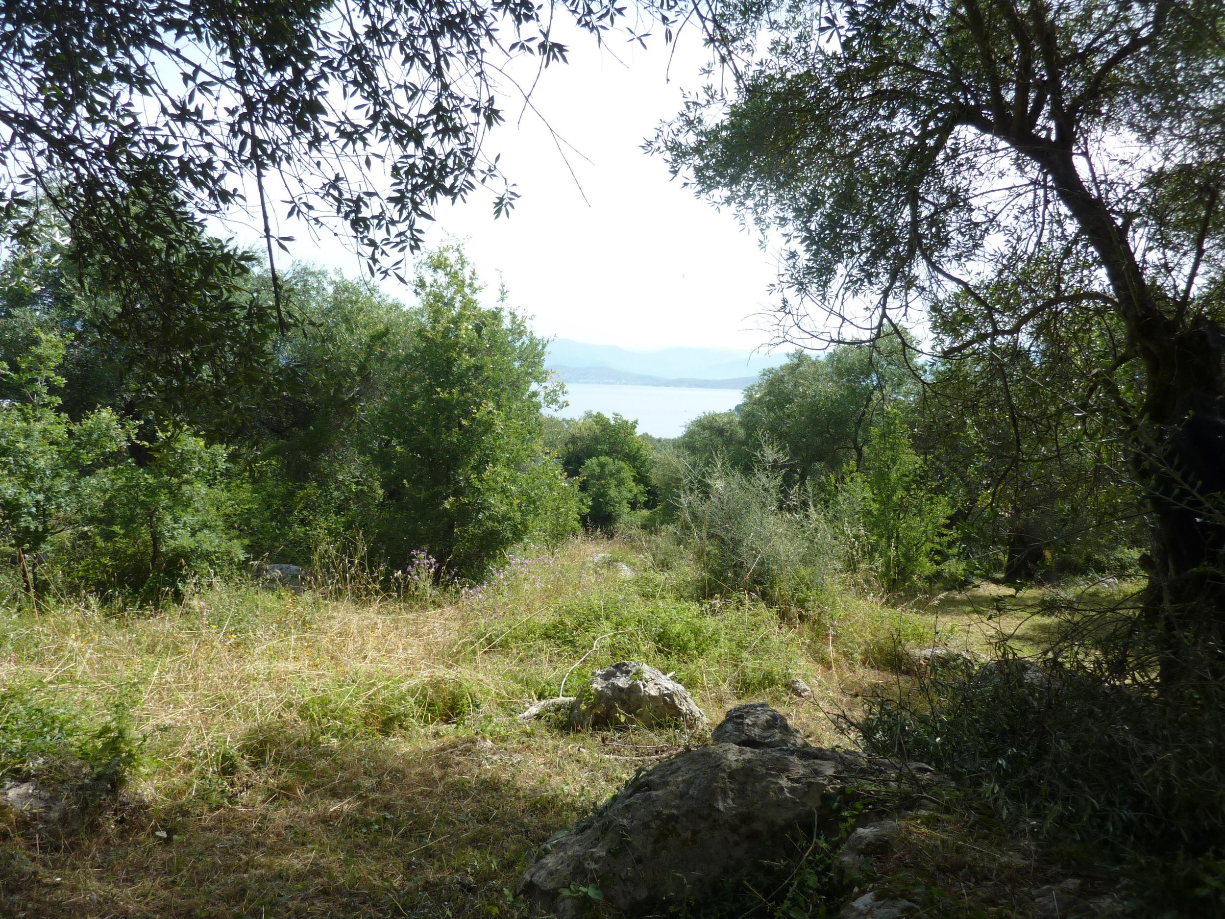 Kassiopi hilltop land (1).JPG