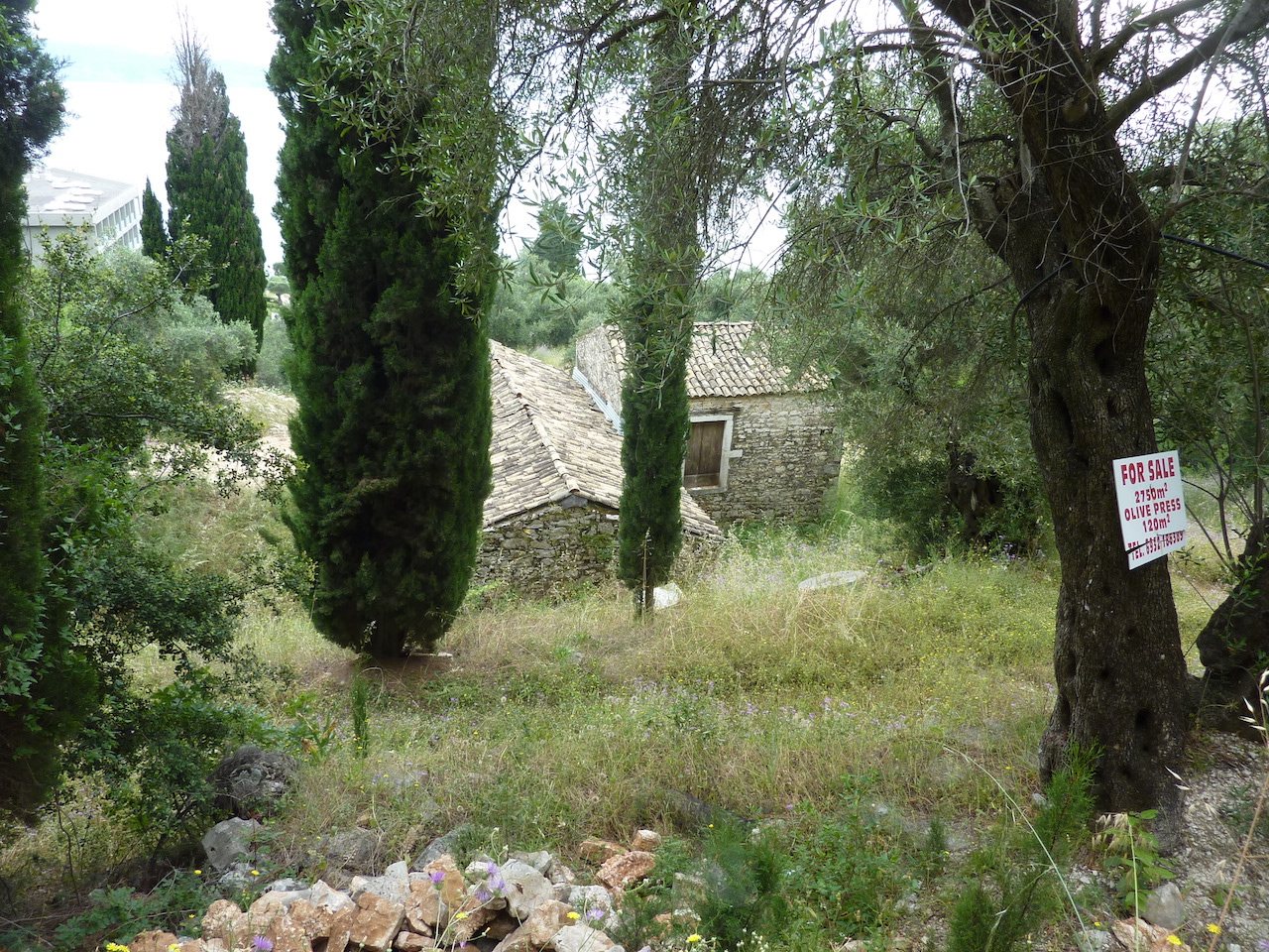 Old olive press, june 2016 (6).JPG