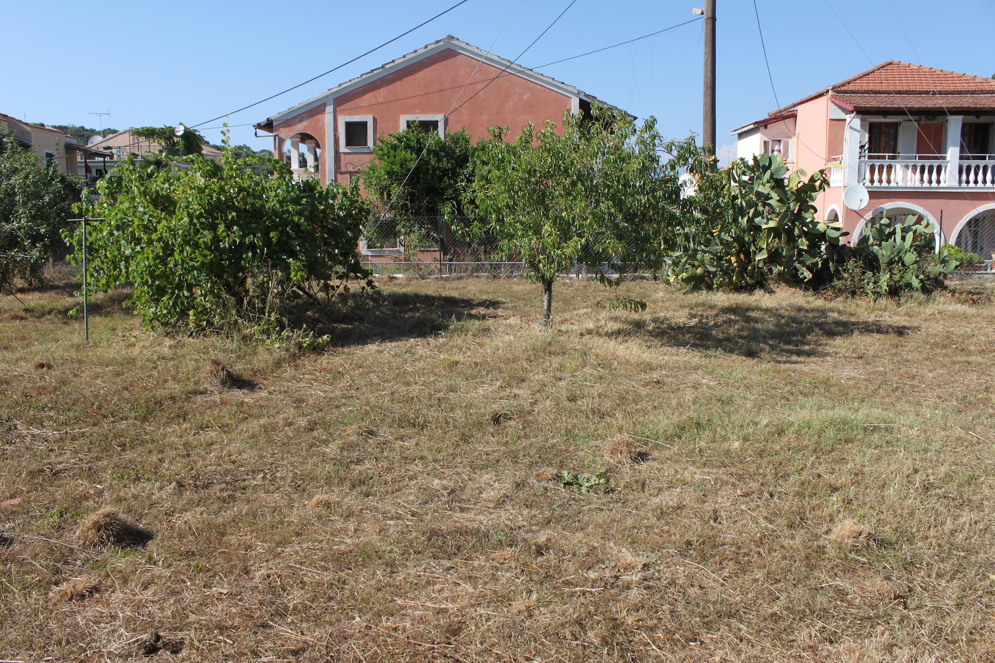 Rouvas land, July 2016 (7).JPG