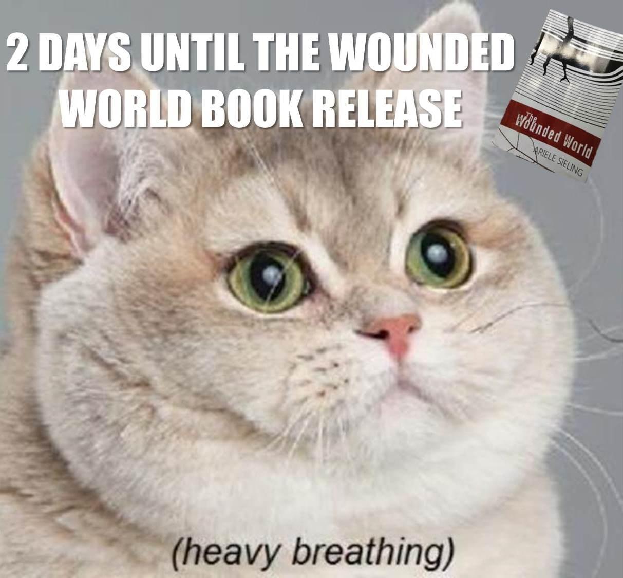 Cat-WoundedWorld.jpg