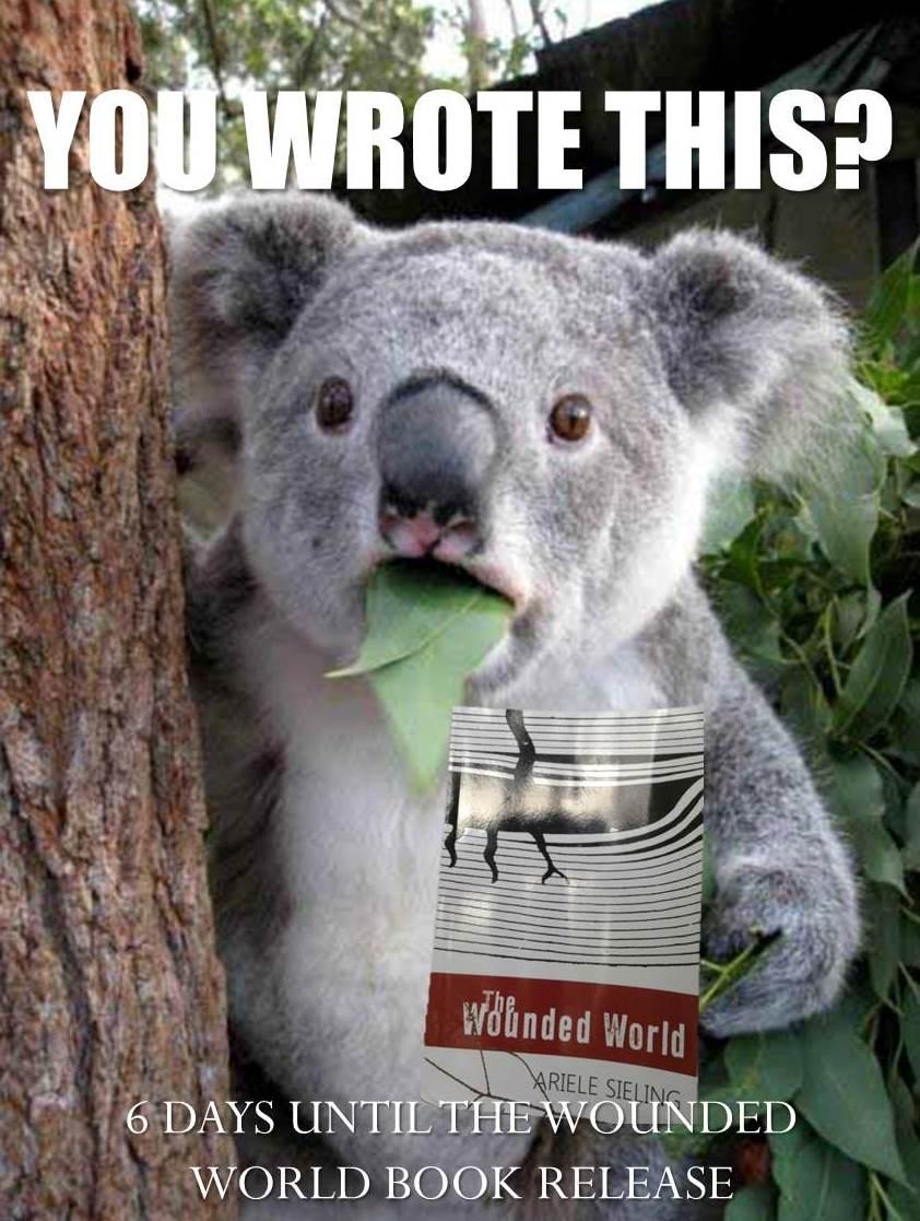 Koala-WoundedWorld.jpg