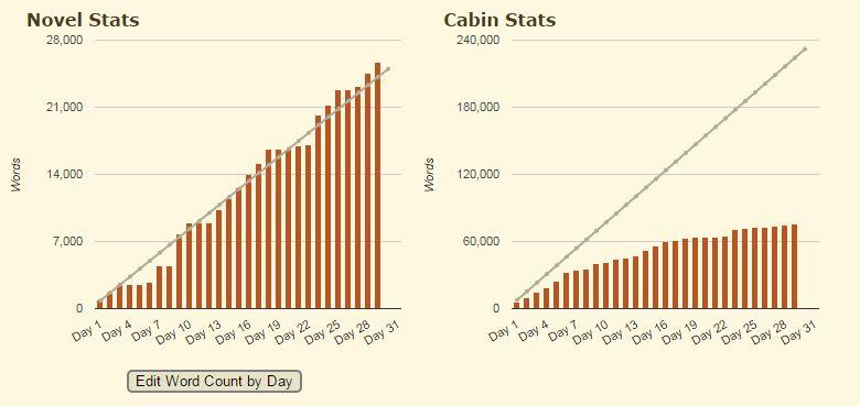 camp-nano-stats-2015