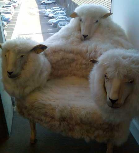 weird-sheep-chair