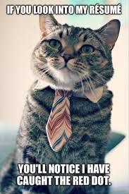 red-dot-cat-meme-2