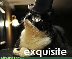 victorian-cat-meme