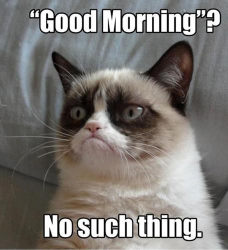 Us morning people might disagree, but, point taken.