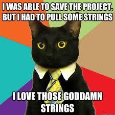 business-cat-goddamn-strings